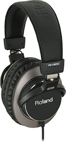 Roland RH-300 Stereo Headphones from ROLAND