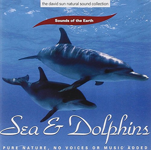 Sea & Dolphins