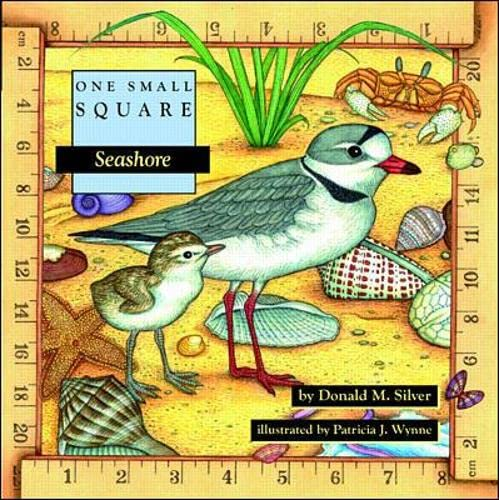 Seashore (One Small Square) from McGraw-Hill Education