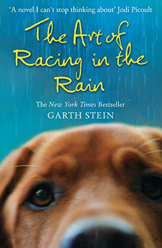 Art Of Racing In The Rain from HarperCollins Publishers