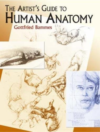 The Artist's Guide to Human Anatomy (Dover Anatomy for Artists) from Dover Publications Inc.