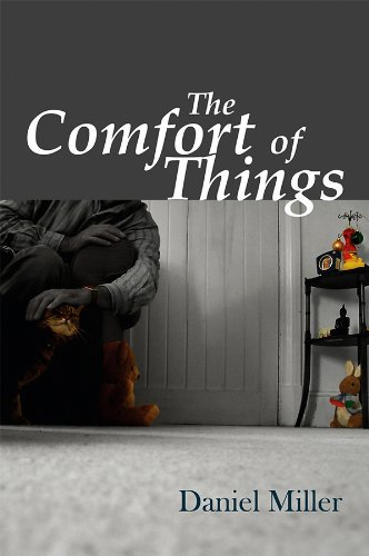 The Comfort of Things from Polity Press