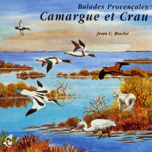 Walks in the Camargue and the Crau