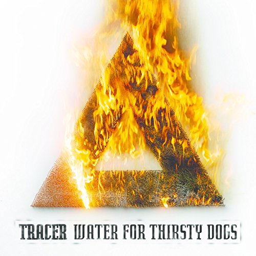 Water For Thirsty Dogs