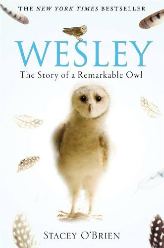 Wesley: The Story of a Remarkable Owl from Constable