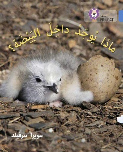 What's in the Egg?: Level 4 (Collins Big Cat Arabic Reading Programme) from Collins