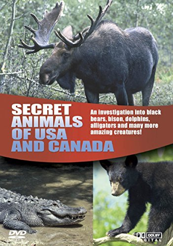 Wildlife - Secret Animals Of USA And Canada [DVD] from Boulevard