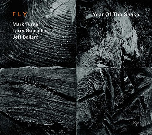 Year Of The Snake from ECM RECORDS