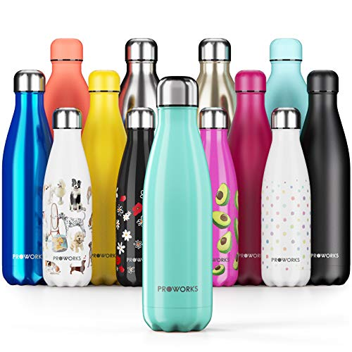Proworks Performance Stainless Steel Sports Water Bottle | Double Insulated Vacuum Flask for 12 Hours Hot & 24 Hours Cold Drinks - Great for Home, Work, Gym & Travel - 500ml - BPA Free – Green from Proworks