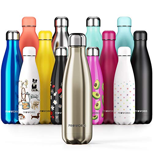 Proworks Performance Stainless Steel Sports Water Bottle | Double Insulated Vacuum Flask for 12 Hours Hot & 24 Hours Cold Drinks - Great for Home, Work, Gym & Travel - 500ml - BPA Free – Metallic Gold from Proworks