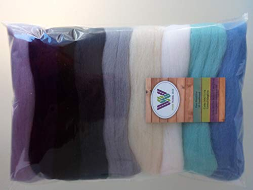 Assorted Colours* 100% Merino Wool Tops for Wet & Dry Felting, Packs of 90 Grams (February 90 g) from Pure Wool Hut