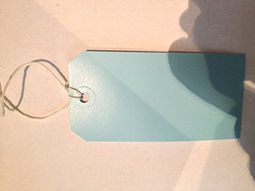 Pack Of 100 x Blue Strung Tags Tickets Luggage Labels 120 x 60mm from Q-CONNECT