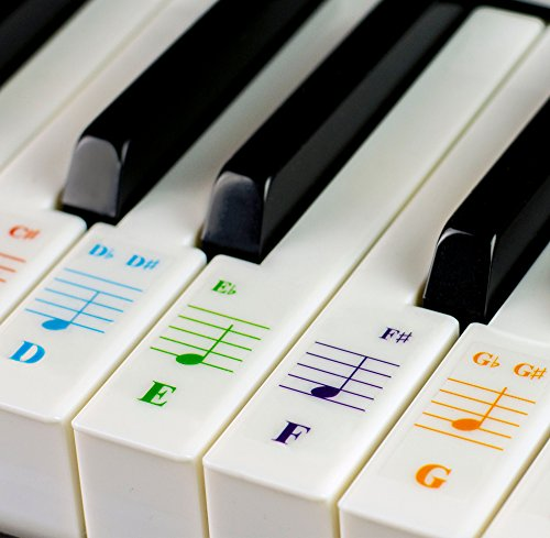 Piano Stickers for 49/61/76/88 Key Keyboards - Transparent and Removable with Free Piano Ebook from QMG