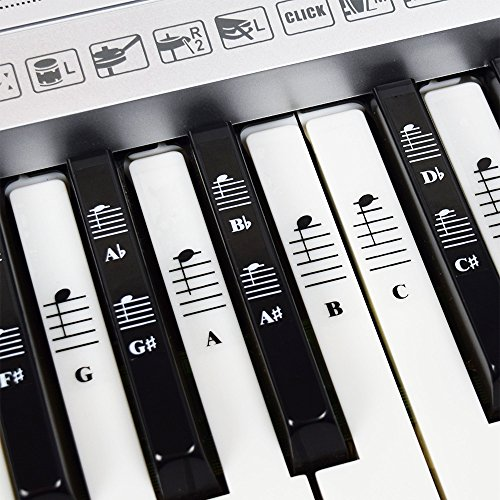 Piano and Keyboard Music Note Full Set Stickers for White and Black Keys with Piano Songs EBook & User Guide; Transparent and Removable! - For Easy Piano Lessons from QMG