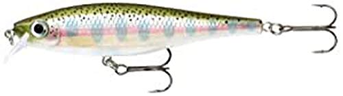 Rapala BX Minnow Lure with Two No. 4 Hooks, 0.9-1.5 m Swimming Depth, 10 cm Size, Rainbow Trout from Rapala
