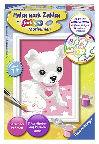 "Ravensburger 296842 ""Chihuahua"" Painting By Numbers Set from Ravensburger"