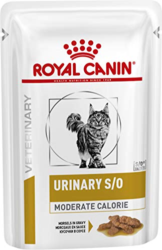 Royal Canin Veterinary Diet Feline Urinary S/O Moderate Calorie Gravy Pouches 48 x 85g from Royal Canin