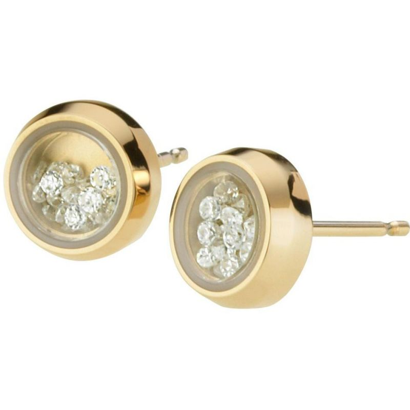 Ladies STORM PVD Gold plated Mimi Earring from STORM Jewellery