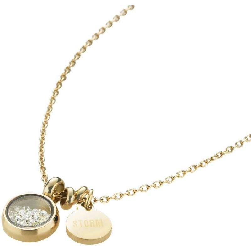 Ladies STORM PVD Gold plated Mimi Necklace from STORM Jewellery