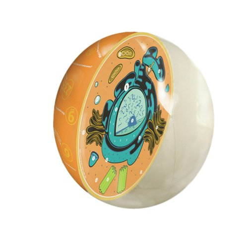 Science2Education 2059 Inflatable Animal Cell Model from Eisco