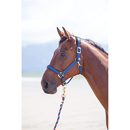 Shires Topaz Nylon Headcollars (387) Navy Extra Full from Shires