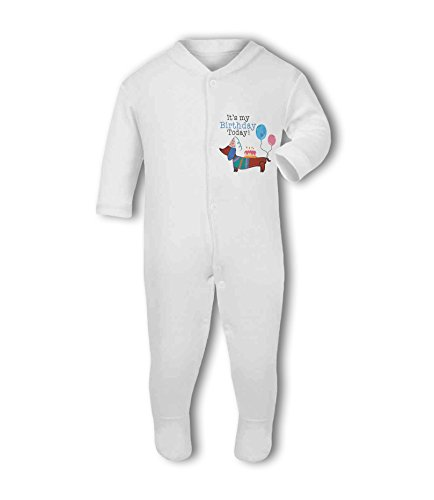 It's My Birthday Today! Dachshund (Blue) - Baby Grow Suit from Simply Wallart