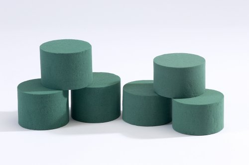 5 x Oasis Ideal Round Cylinder Wet Foam for Florist Floral Craft Flowers Floristry Designs & Displays from Smithers Oasis