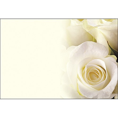 Plain Floristry Message Cards Flowers and Floral Gifts (Cream Rose) from Smithers Oasis