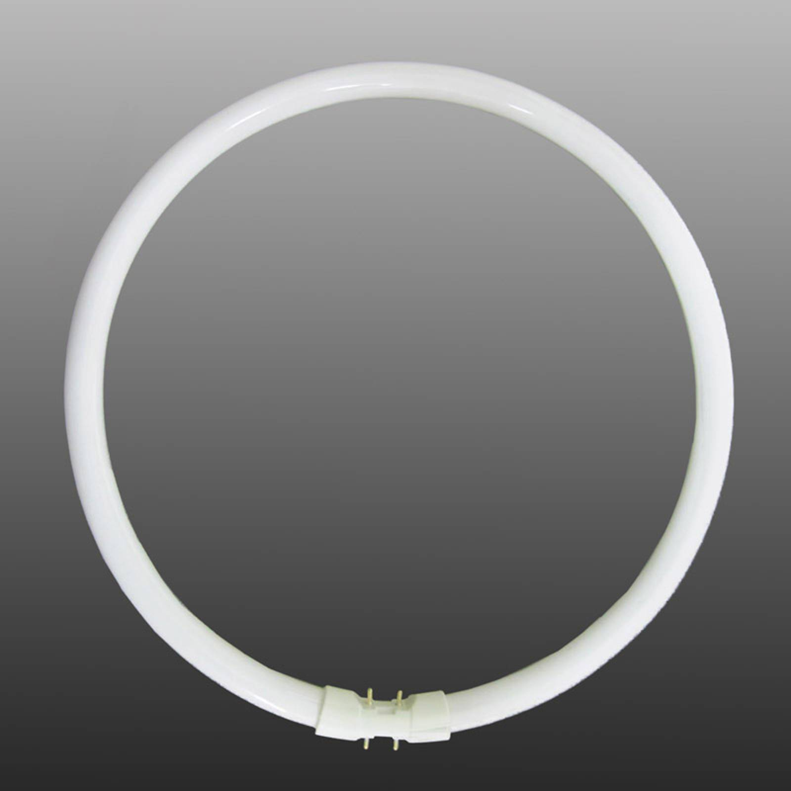 2GX13 T5 22 W fluorescent ring, warm white from Stylvania