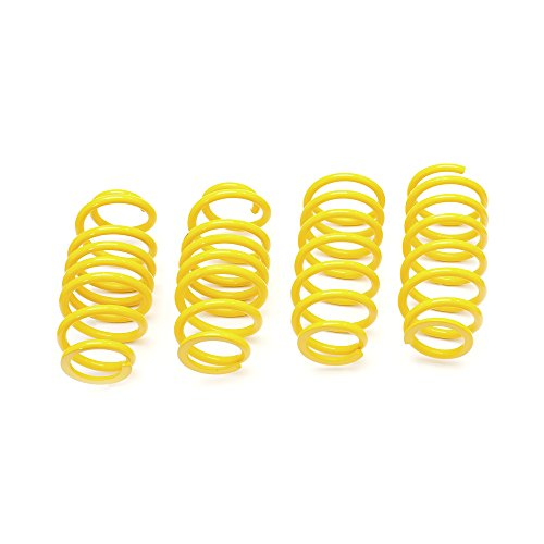 ST Lowering Spring 28227013 from T & S