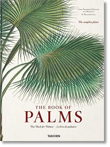Martius: The Book of Palms from Taschen
