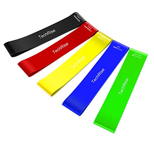 Resistance Loop Bands, Exercise Bands, TechRise Set of 5 Natural Latex Fitness Bands for Workout and Physical Therapy, E-Guide, Pilates, Yoga, Rehab, Improve Mobility and Strength from TechRise
