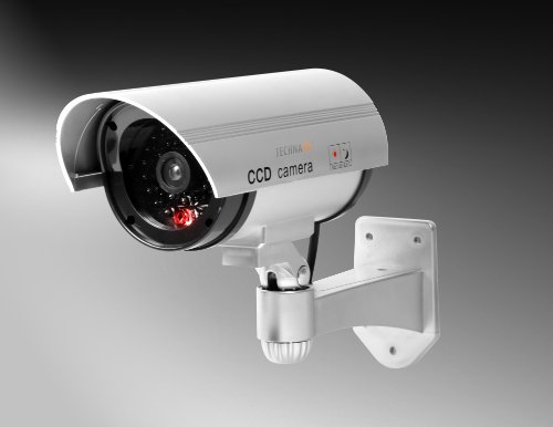 Technaxx TX-18 CCD Security Camera Dummy from Technaxx
