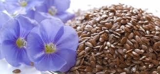 Whole Linseed ** Free Uk Post** Flaxseed Antioxidant Omega 3 Fiber Alsi Lin Seed Vegans 200g from The Worldwide Mint