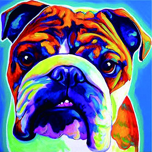 TianMai Hot New DIY 5D Diamond Painting Kit Crystals Diamond Embroidery Rhinestone Painting Pasted Paint By Number Kits Stitch Craft Kit Home Decor Wall Sticker - Colorful Bulldog, 30x30cm from TianMai