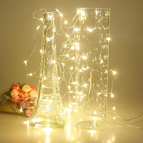 Timewanderer Warm White Led String Starry Fairy Light AA Battery Operated 3M/10Ft 30 Bright Micro LED Lights Ultra Thin Decorative Lights Silver Wire for DIY from Timewanderer