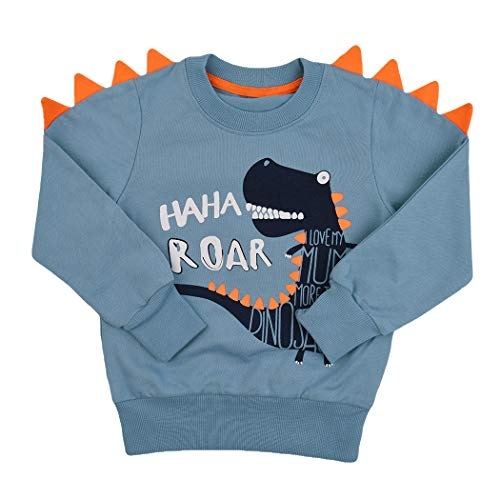 Tkria Little Kids Boys Dinosaur T-Shirt Sweatshirt Pullover Clothing Shirts Casual Tops Cotton Tee Age 1 2 3 4 5 6 7 8 9Years Blue from Tkria
