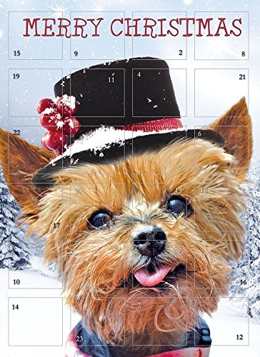 Advent Calendar Cute Puppy Dog Hat Snow Glitter Finish from Tracks