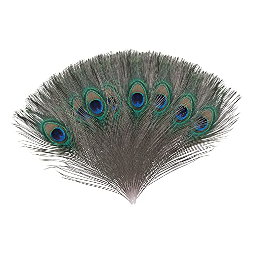 Trimming Shop Real Peacock Feather 10 inches – 12 inches Bird Tail Colourful Feathers Pack for Wedding Christmas Party Centerpiece Decoration, DIY Art & Craft, 10pcs from Trimming Shop