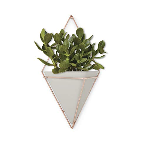 Umbra Trigg Hanging Planter Vase & Geometric Wall Decor Container - Great For Succulent Plants, Air Plant, Mini Cactus, Faux Plants and More, Concrete Resin/Copper (Large) from Umbra