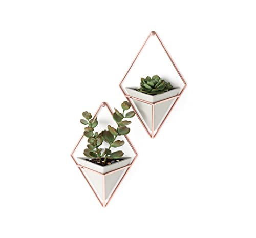 Umbra Trigg Hanging Planter Vase & Geometric Wall Decor Container - Great For Succulent Plants, Air Plant, Mini Cactus, Faux Plants and More, Concrete Resin/Copper (Set of 2) from Umbra