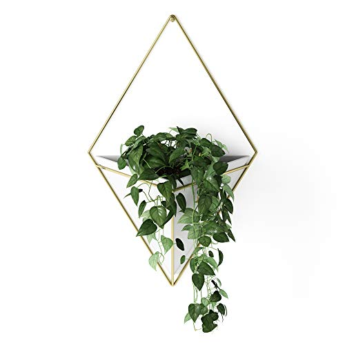 Umbra Trigg Hanging Planter Vase & Geometric Wall Decor Container - Great For Succulent Plants, Air Plant, Mini Cactus, Faux Plants and More, White Ceramic/Brass (Large) from Umbra
