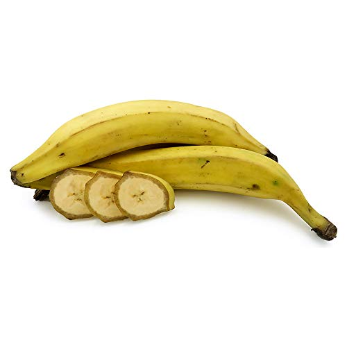 Ripe Plantain (Pack of 10) from Generic