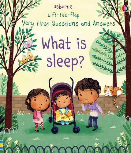 Very First Lift-the-Flap Questions & Answers What is Sleep? (Lift the Flap Very First Questions & Answers): 1 from Usborne Publishing Ltd