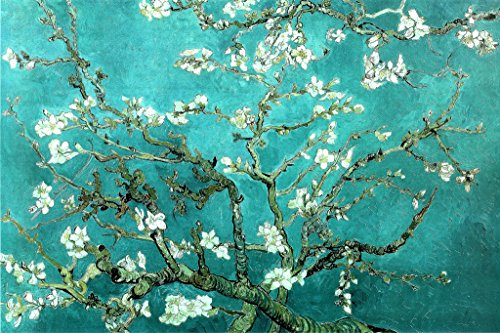 Van Gogh Almond Blossom San Ramy Maxi Poster, Multi-Colour from Van Gogh