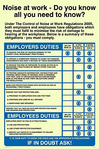 Viking Signs MP274-A4P-PV The Noise At Work Regulations Sign, Photoluminescent Sticker, 300 mm H x 200 mm W from Viking Signs