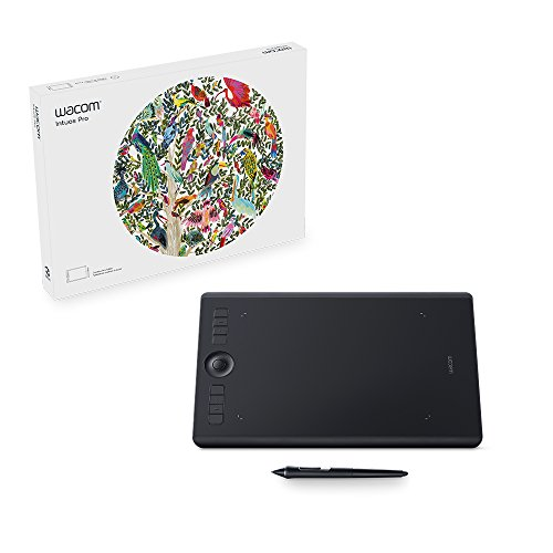 Wacom Intuos Pro Pen Tablet (Size: M) / Medium Professional Graphic Tablet incl. Wacom Pro Pen 2 Stylus with Replacement Tips / Compatible with Windows & Apple from Wacom