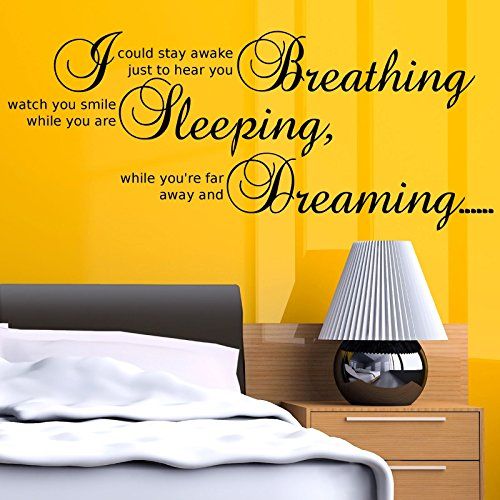 Aerosmith Dream Song Bedroom Wall Quote Wall Art Sticker Decal Transfer Stencil WSD366 from Wall Smart Designs