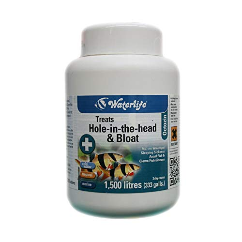 Waterlife Octozin 200 Tablets Dropsy & Hole In The Head from Waterlife