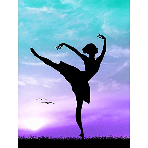 PHOTO MOCK UP SILHOUETTE SUNSET BALLET DANCER ART PRINT POSTER MP3955B from Wee Blue Coo Prints